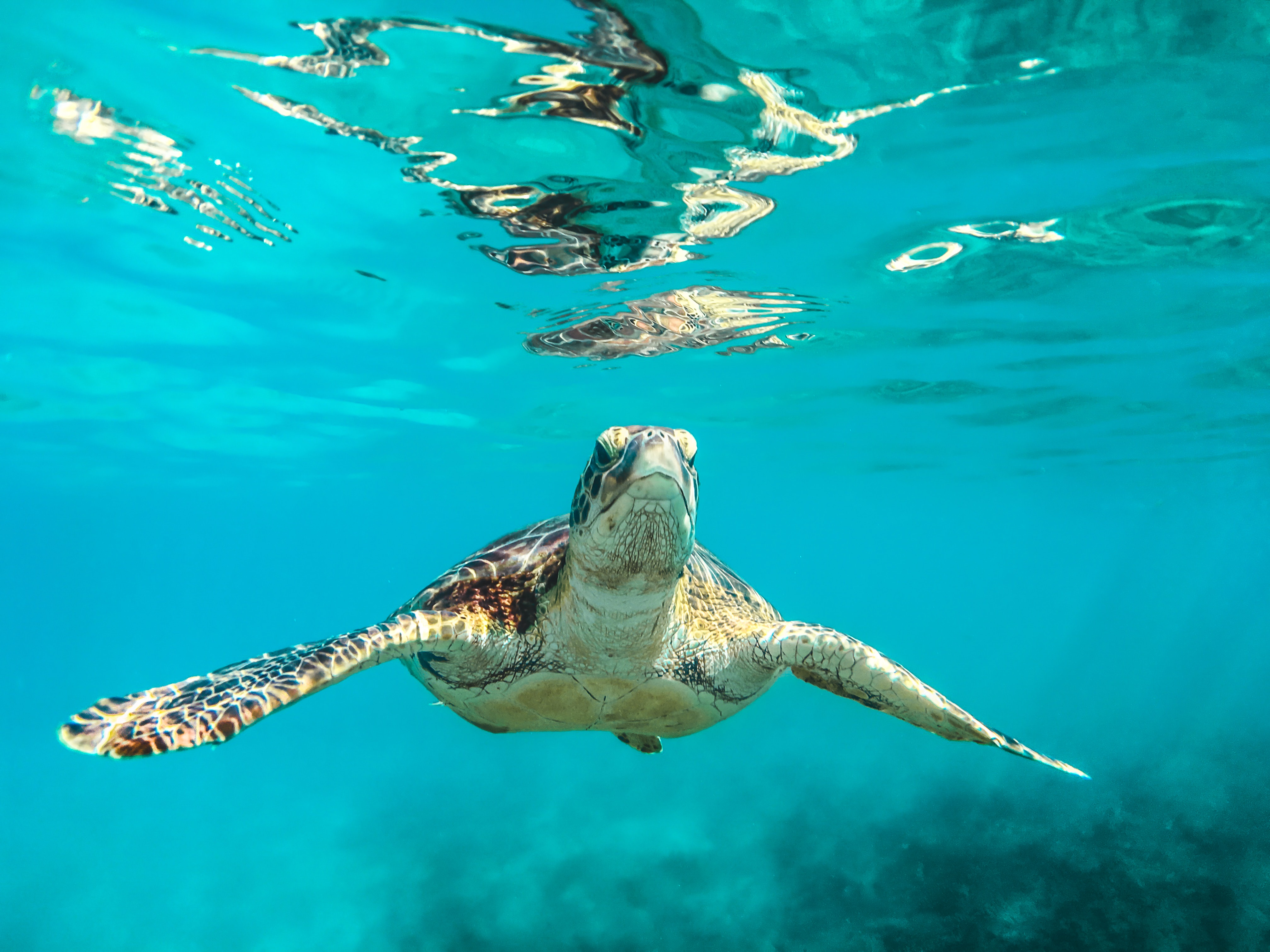 Returns for CTAs over 100mn – Underwater again…